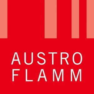 Szkolenie Austroflamm - zapowiedź