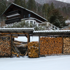 Tak sezonują drewno w Austrii (fot. Grzegorz Mrówczyński)