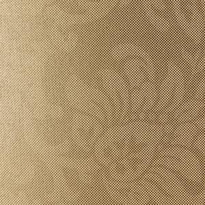 Spieki kwarcowe, struktura filo romantico oro fot. Laminam/Interstone
