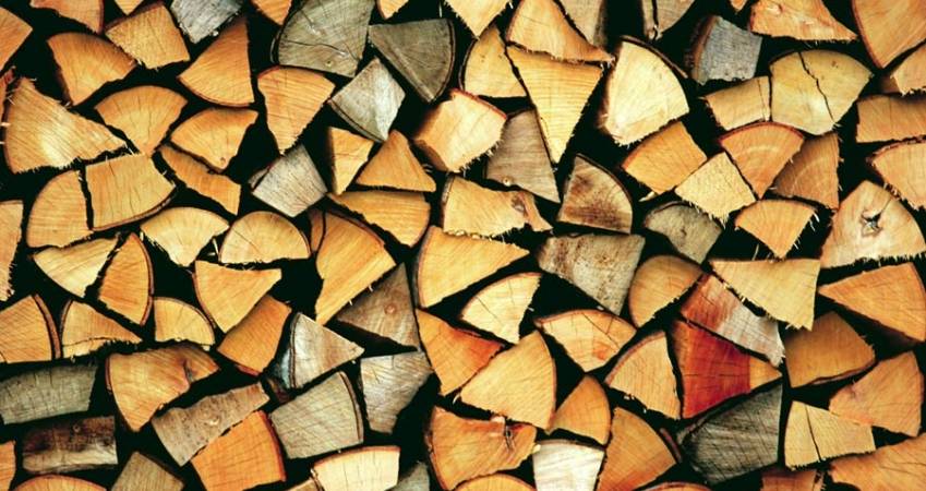 drewno.jpg