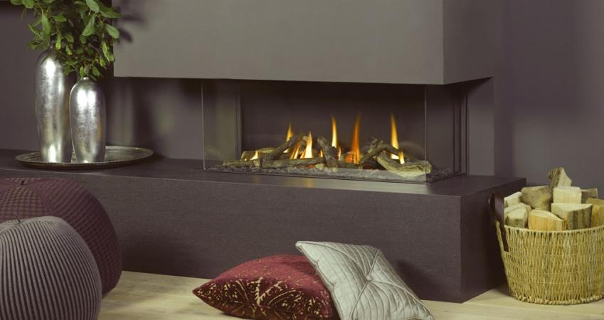 steinberg---dreamfire-120-l.jpg